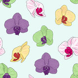 De kleurrijke Achtergrond van de Orchidee Stock Afbeeldingen
