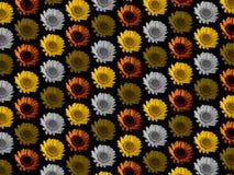 De kleurrijke bloem herhaalt achtergrond Royalty-vrije Stock Foto