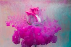 De kleurrijke daling die op mooi vallen nam toe stock afbeelding