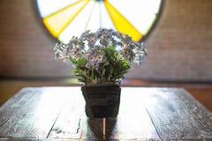 De kleurrijke decoratie van bloemenpotten Royalty-vrije Stock Foto's
