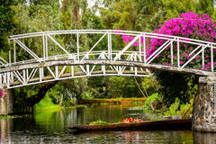 De kleurrijke Drijvende Tuinen van Mexico Xochimilco in Mexico-City Royalty-vrije Stock Foto