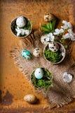 De kleurrijke Eieren van de Kwartels van Pasen Royalty-vrije Stock Fotografie