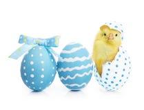 De kleurrijke eieren van Pasen met bloemen Royalty-vrije Stock Afbeelding
