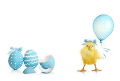 De kleurrijke eieren van Pasen met bloemen Royalty-vrije Stock Afbeeldingen