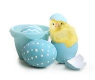 De kleurrijke eieren van Pasen met bloemen Stock Fotografie