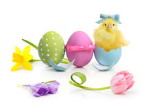 De kleurrijke eieren van Pasen met bloemen Stock Foto's