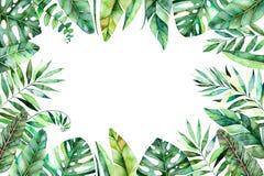 De kleurrijke grens van het waterverfkader met kleurrijke tropische bladeren Royalty-vrije Stock Fotografie