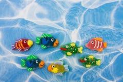 De kleurrijke Grens van Vissen Stock Afbeelding