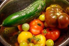 De kleurrijke Groenten van de Herfst royalty-vrije stock afbeelding