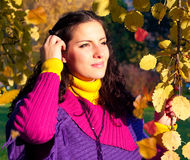De kleurrijke herfst 10 Royalty-vrije Stock Afbeeldingen