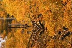 De kleurrijke herfst door meer Royalty-vrije Stock Afbeeldingen