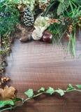 De kleurrijke herfst met bladeren, denneappels, kastanjes, noot Royalty-vrije Stock Afbeelding