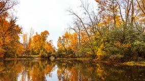 De kleurrijke herfst met esdoornbomen en waterspiegel in Mille stock fotografie
