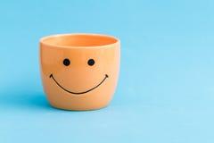 De kleurrijke het glimlachen potten van de pretbloem Royalty-vrije Stock Afbeeldingen
