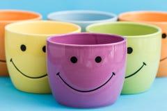 De kleurrijke het glimlachen potten van de pretbloem Stock Fotografie