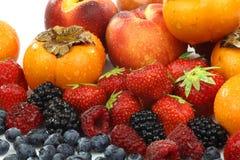 De kleurrijke inzameling van het de zomerfruit Stock Fotografie