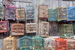 De kleurrijke Kooi van de Vogel Stock Foto's
