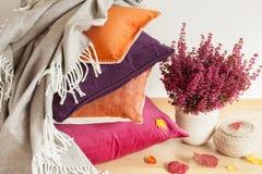 De kleurrijke kussens werpen het comfortabele blad van de de stemmingsbloem van de huisherfst stock fotografie
