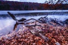 De kleurrijke landschappen van het dalingslandschap Stock Foto's