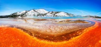 De kleurrijke Lente Yellowstone Royalty-vrije Stock Foto's