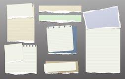 De kleurrijke nota, notitieboekjedocument stukken met gescheurde rand plakte op donkergrijze backgroud Vector illustratie Stock Foto's