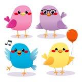 De kleurrijke Partij van de Vogel Royalty-vrije Stock Afbeeldingen