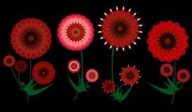 De kleurrijke rode digitale bloemen van de kunstzomer op zwarte Royalty-vrije Stock Fotografie