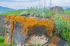 De kleurrijke rotsen Stock Afbeelding