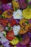 De kleurrijke roze witte purpere sinaasappel van het bloemenboeket stock afbeelding