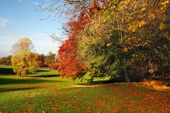 De kleurrijke Scène van de Herfst Royalty-vrije Stock Afbeeldingen