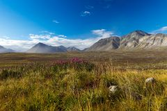 De kleurrijke toendra van de herfstchukotka, Noordpoolcirkel Royalty-vrije Stock Foto's