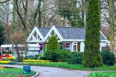 De kleurrijke tulpen van Pavillion en van de bloem komen in Nederlands park, Lisse, Holland tot bloei Royalty-vrije Stock Afbeelding