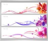 De kleurrijke Vector van de Bloem Royalty-vrije Stock Foto's