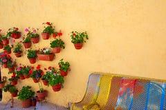 De kleurrijke voorgevel van Burgos met de potten van bloeminstallaties Stock Afbeeldingen