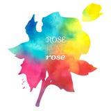 De kleurrijke waterverfvlek met aquarelle verfvlek, nam met de hand geschilderde waterverf toe Royalty-vrije Stock Foto