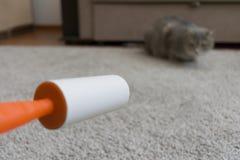 De kleverige rol maakt het tapijt van kattenhaar schoon royalty-vrije stock fotografie