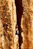 De klimmer van de rots in een rotsschoorsteen Stock Afbeelding