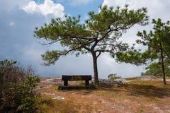 De klip van de jamzonde bij het nationale park van PhuKradueng stock afbeeldingen