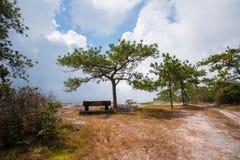De klip van de jamzonde bij het nationale park van PhuKradueng stock afbeelding