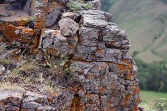 De klip van de korstmossteen Stock Foto