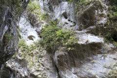De klippen bij het taroko nationale park royalty-vrije stock foto's