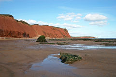 De klippen en het strand van Exmouth royalty-vrije stock afbeeldingen