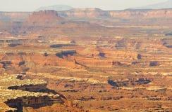 De klippen van Canyonlands en van mesa Royalty-vrije Stock Afbeelding