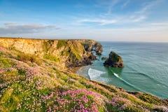 De Klippen van Cornwall in de Zomer stock afbeeldingen