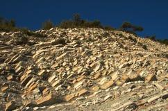 Van de de klippen de natuurlijke groei van de steen natuurlijke achtergrond Stock Fotografie