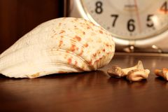 De klok achter shell stock foto
