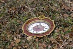 De klok die middag tonen ligt op het gras stock afbeelding