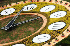 De klok van de bloem in Kiev Stock Afbeeldingen