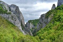 De kloof van Cheileturzii, natuurlijke reserve, Roemenië Royalty-vrije Stock Foto