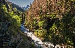 In de kloof van de rivier Gonachkhir Royalty-vrije Stock Foto's